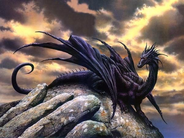 Mon...mon gardien ?! [PV Ombre] Dragon-noir